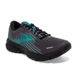 Brooks Ghost 13 GTX DONNA